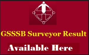 GSSSB Surveyor Result